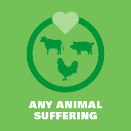 Any animal suffering