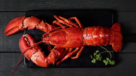 It's officially lobster season!