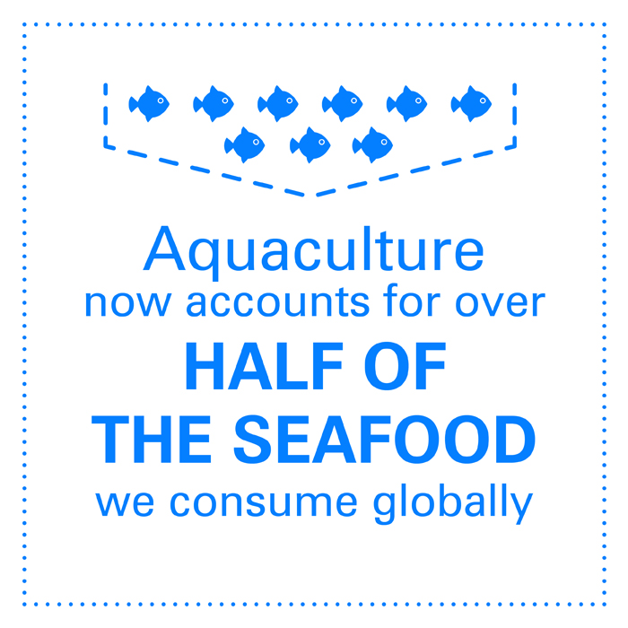 Seafood is the primary source of protein for over one billion people