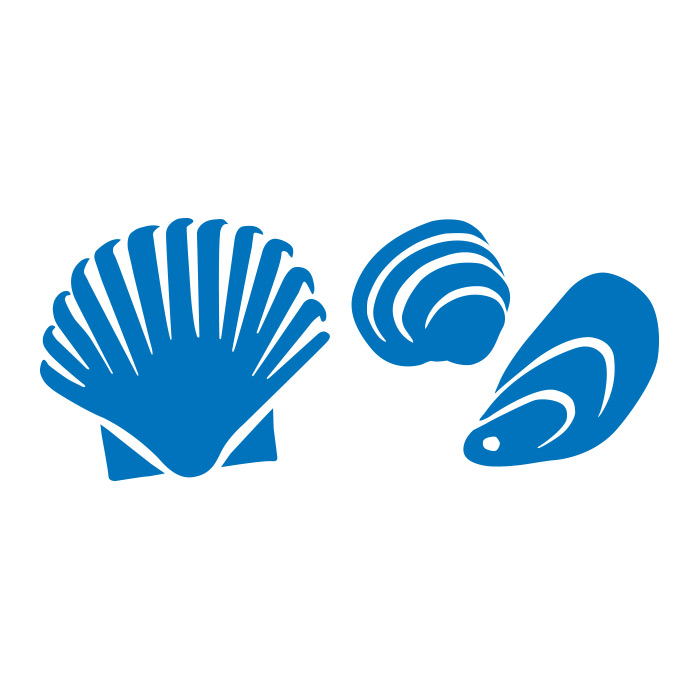 SHELLFISH: CLAMS, MUSSELS, OYSTERS, SCALLOPS