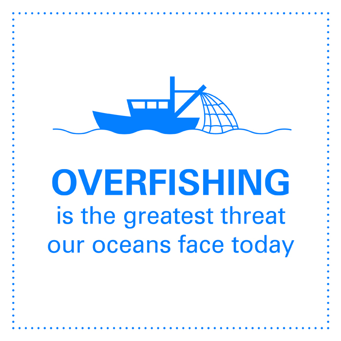 Overfishing is the greatest threat our oceans face today