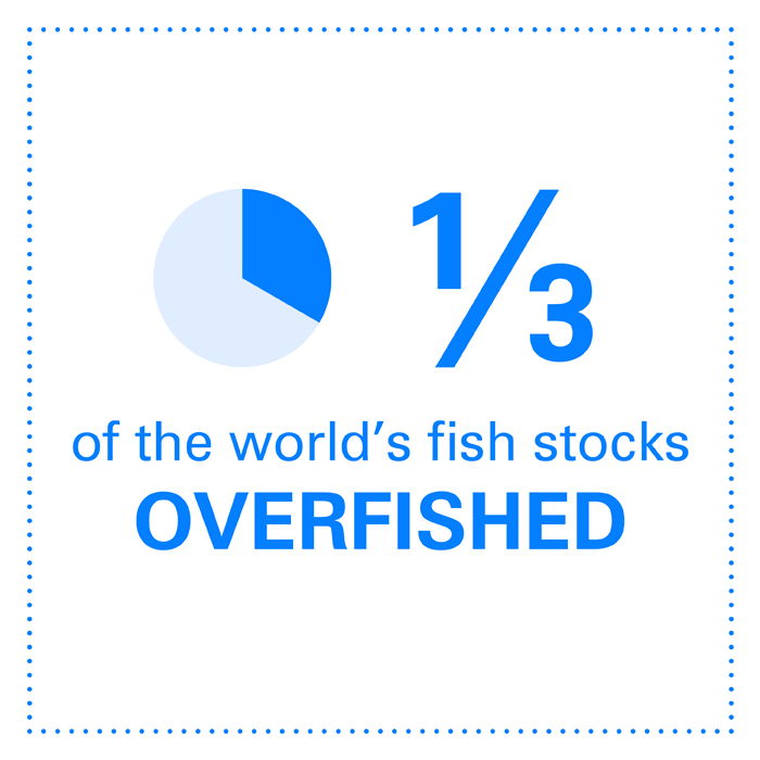 1/3 of the world's fish stocks are overfished