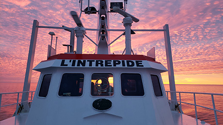 Northern prawns – Interview with trawler captain Dave Cotton